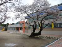 69_yeongokelementaryschool-1-18.jpg